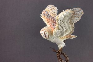 Winter Spirit barn owl by hontor