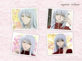 ayame sohma by yugiohlover911