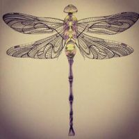 Dragonfly by TheKingOfHock