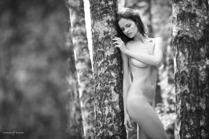 Among Trees by eugenebuzuk