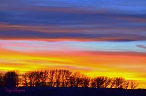 Sky of Colors XIV by ChickensAndDucks