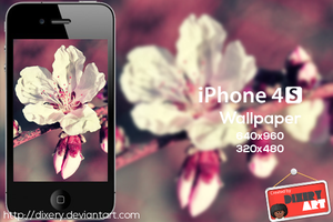 FREE Flower wallpaper by Dixery