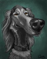 Isis Pet Caricature by CharReed