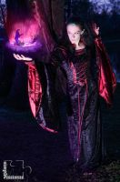 The Sorcerer by dinosimplicissimus
