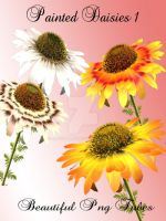 Painted Daisy Pack PNG by kayshalady