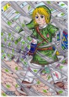 Link,the warrior of the wind -The legend of Zelda- by raptorthekiller