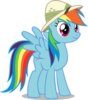 Rainbow Dash Vector by RDbrony16