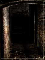 To the dark by 0-Photocyte