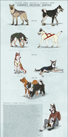 Garbers Sled Team - Ref by Valsier