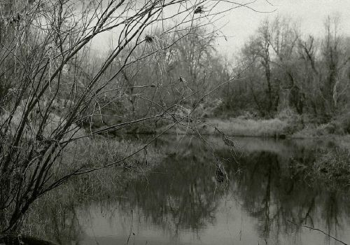 Place of dark solace... by thewolfcreek