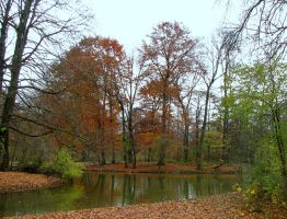 Autumn Time 7 by stefanpriscu