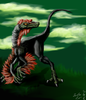 Buitre-Troodontidae by SpiderMilkshake