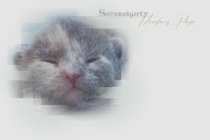 Sovereignty Members Page Layout -- Winter 2013 by leafeh22
