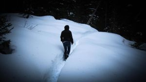 Following the Snow Path by Know-The-Ropes