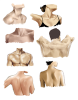 Neck and Shoulders Study by CrAzY-lUnAr-GiRl