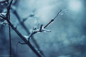 Winter. by Rimo-xOH