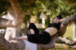 Judal: Lounging in the Trees by Tora-rin