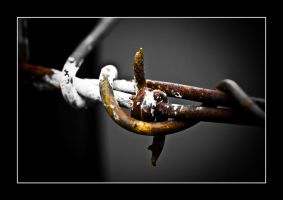 barbed wire and ... by hexC0DE
