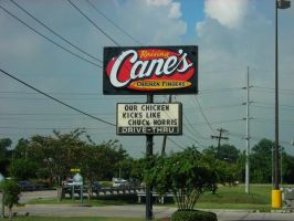 Raising Canes vs. Chuck Norris by ZimTheHomicidal