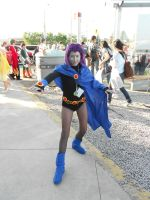 Anime North 2012 - Teen Titans by TehTig3r