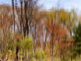 Pond Abstract by EvaMcDermott