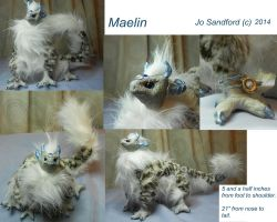 Maelin 2014 Available for adoption by miayan