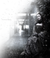 The Wind Told Me by Secr3tDesign