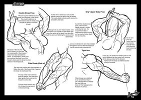 Tutorial: Arms 2 by Bambs79