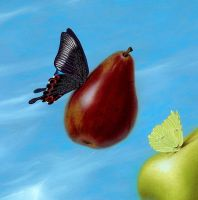 Fly By Pears  - detail by LindaRHerzog