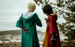 Draco and Harry cosplay by Elis-Kelt