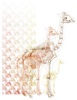 giraffe skeleton by Menitti