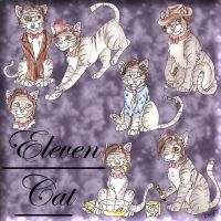 Eleven Cat by lizzie9009