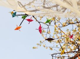 origami cranes by Holunder