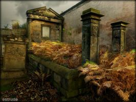 A Deathbed Of Golden Ferns by Estruda
