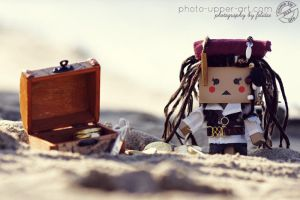 37-52 CTL2013 - Cpt.Lilly Sparrow and the treasure by FeliDae84