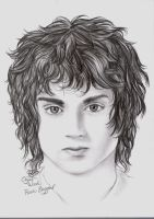 LOTR Actor 1: Elijah Wood by Laiyla
