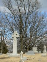 Tombstones Trees by BohemianHarlot