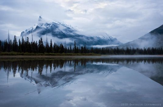 The Morning Rundle by Dani-Lefrancois