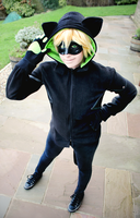 Miraculous Ladybug- Chat Noir Hoodie by CauldronOfMischief
