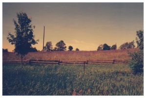 Halton County by thinktrees