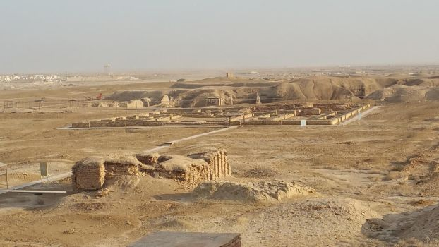 Views from the Ziggurat of Ur by markdaym