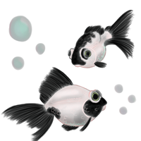 Panda More Fishies by Angeltsuki-Chan