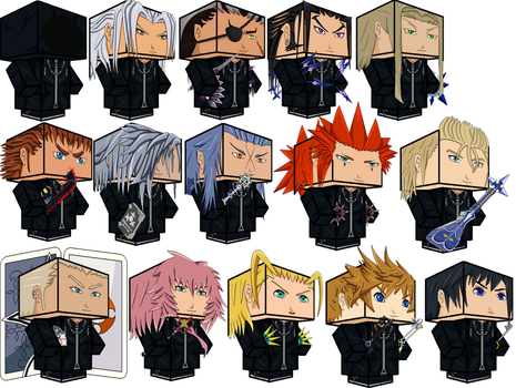 Organization XIII New by zienaxd
