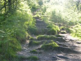 West Highland Way11 by Anararion