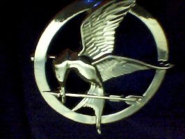 The Mockingjay Pin by PeetathebreadMellark