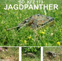 My second Jagdpanther! by DingoPatagonico