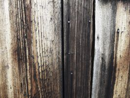 Barn Wood 3 by PTdesigns