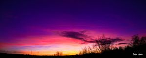The purple sunset by T-20-A-20