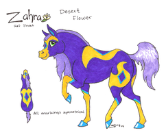 HARPG: Zahra by Dragonheart-Stables