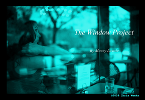 Window Project cover art by sarcasticallysweet